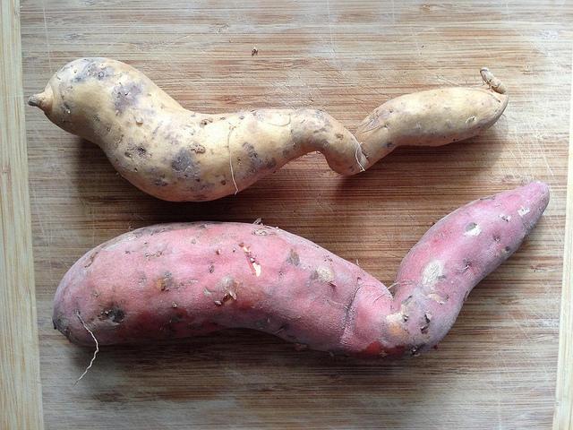 Zdeformované brambory, které nemají šanci dostat se na trh, nakonec většinou končí v koši.